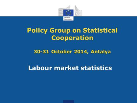 Policy Group on Statistical Cooperation 30-31 October 2014, Antalya Labour market statistics.