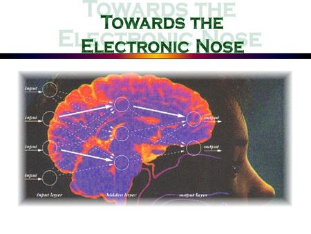 Introduction:.......... Olfactory Physiology Organic Chemistry Signal Processing Pattern Recognition Computational Learning Electronic Nose Chemical Sensors.