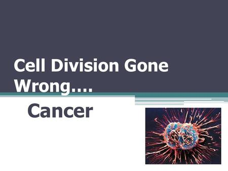 Cell Division Gone Wrong…. Cancer. Rates of Cell Division Inner lining of small intestine – a week or less Pancreas – a year or more Liver – Cell rarely.