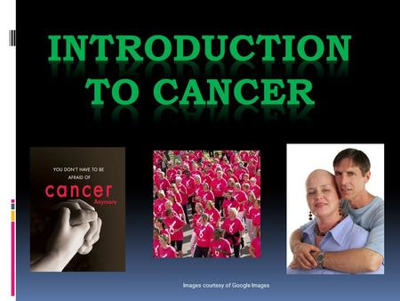 Images courtesy of Google Images. What are the most common types of cancer? The most common type of cancer is: Skin Cancer!