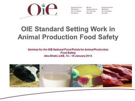 OIE Standard Setting Work in Animal Production Food Safety Seminar for the OIE National Focal Points for Animal Production Food Safety Abu Dhabi, UAE,