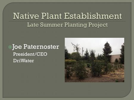  Joe Paternoster President/CEO DriWater.  Timing of winter/fall planting  Water needs vs. water use  Faster establishment with lower maintenance 