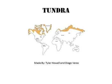 Tundra Made By: Tyler Howell and Diego Veras. Tundra Diagram.