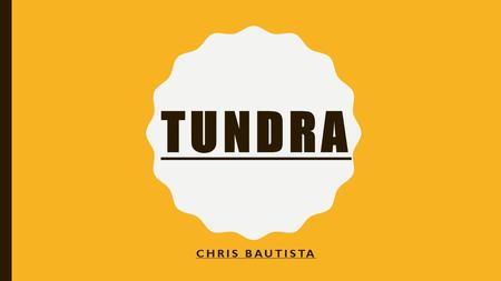 TUNDRA CHRIS BAUTISTA. TUNDRA MEANS MARSHY PLAIN. THE GEOGRAPHICAL DISTRIBUTION OF THE TUNDRA BIOME IS LARGELY POLEWARD OF 60° NORTH LATITUDE. THE TUNDRA.