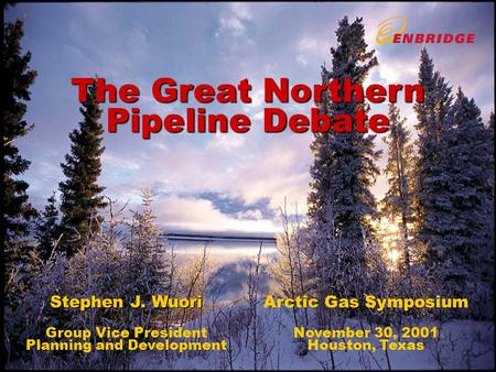 The Great Northern Pipeline Debate Stephen J. Wuori Group Vice President Planning and Development Arctic Gas Symposium November 30, 2001 Houston, Texas.