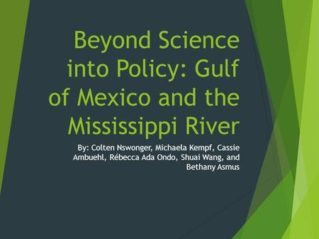 Beyond Science into Policy: Gulf of Mexico and the Mississippi River By: Colten Nswonger, Michaela Kempf, Cassie Ambuehl, Rébecca Ada Ondo, Shuai Wang,