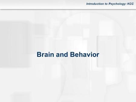 Introduction to Psychology: KCC Brain and Behavior.