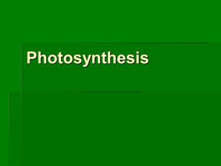 Photosynthesis. Warm-Up  Why do leaves change colors in the fall?  What does this have to do with photosynthesis?