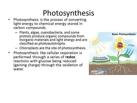 Photosynthesis Photosynthesis is the process of converting light energy to chemical energy stored in carbon compounds. – Plants, algae, cyanobacteria,