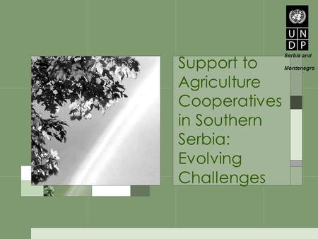 Support to Agriculture Cooperatives in Southern Serbia: Evolving Challenges Serbia and Montenegro.