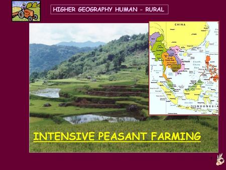 1 INTENSIVE PEASANT FARMING HIGHER GEOGRAPHY HUMAN - RURAL.
