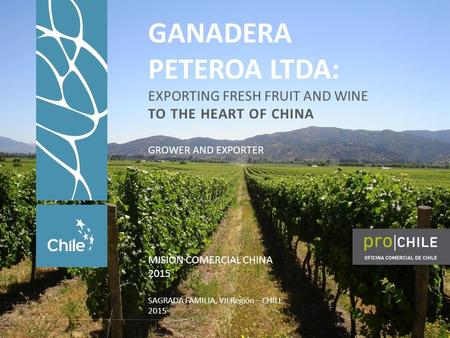 GANADERA PETEROA LTDA: EXPORTING FRESH FRUIT AND WINE TO THE HEART OF CHINA MISIÓN COMERCIAL CHINA 2015 SAGRADA FAMILIA, VII Región – CHILE 2015 GROWER.