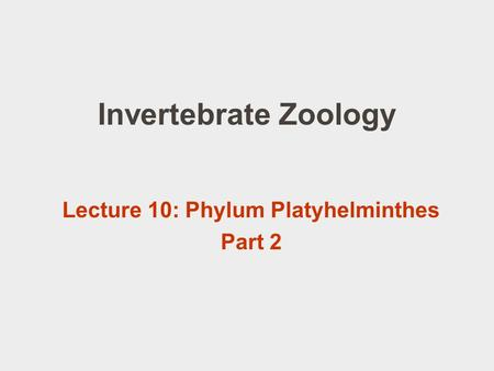 Invertebrate Zoology Lecture 10: Phylum Platyhelminthes Part 2.