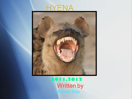HYENA Written by Michael May 2011,2012. Protect ion  The hyena has big strong teeth to protect itself.  It hunts at night so it's enemies don't see.