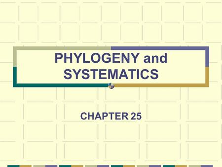 PHYLOGENY and SYSTEMATICS CHAPTER 25. VOCABULARY Phylogeny – evolutionary history of a species or related species Systematics – study of biological diversity.