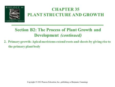 CHAPTER 35 PLANT STRUCTURE AND GROWTH Copyright © 2002 Pearson Education, Inc., publishing as Benjamin Cummings Section B2: The Process of Plant Growth.