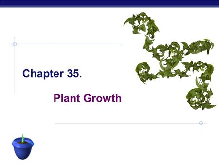 AP Biology Plant Growth Chapter 35. AP Biology Indeterminate growth  Unlike animals most plants grow throughout their life  annuals  life cycle within.