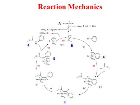 Reaction Mechanics. Explain the concept of a reaction mechanism. Include: rate determining step, potential energy diagrams Additional KEY Terms Bimolecular.