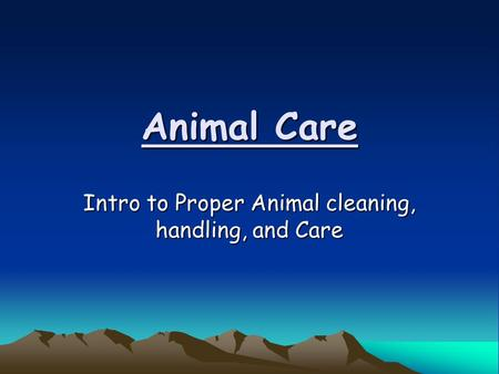 Animal Care Intro to Proper Animal cleaning, handling, and Care.