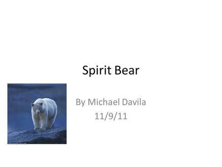Spirit Bear By Michael Davila 11/9/11. Spirit Bears location Great Bear Rainforest in British Columbia, Canada.