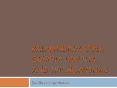 Balantidium coli, Giardia lamblia, and trichomonas.