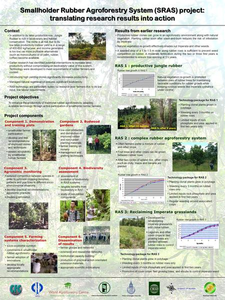 Smallholder Rubber Agroforestry System (SRAS) project: translating research results into action In addition to its latex production role, Jungle Rubber.