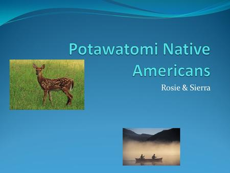 Rosie & Sierra. food Potawatomi Indians ate tobacco,squash,corn,melons,peas, and beans. It looks like they had a healthy diet.