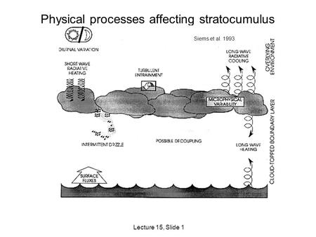 Lecture 15, Slide 1 Physical processes affecting stratocumulus Siems et al. 1993.