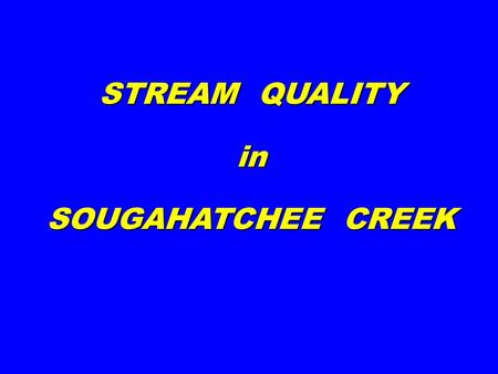 STREAM QUALITY in SOUGAHATCHEE CREEK. LEECH CRANE FLY MIDGE STONEFLY CADDISFLY MAYFLY GOOD WATER QUALITY (EPT~10-23) POOR WATER QUALITY (EPT~0-5)