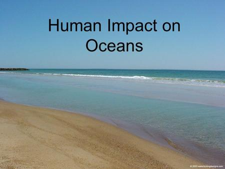 Human Impact on Oceans. About 37% results from a mix of materials and wastes which make up urban run-off and the discharge from land - based industrail.