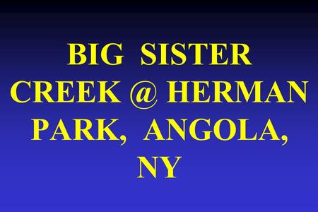 BIG SISTER HERMAN PARK, ANGOLA, NY. Big Sister Herman Park, Angola, NY ROAD & BRIDGE Existing planform.