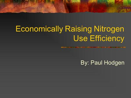 Economically Raising Nitrogen Use Efficiency By: Paul Hodgen.