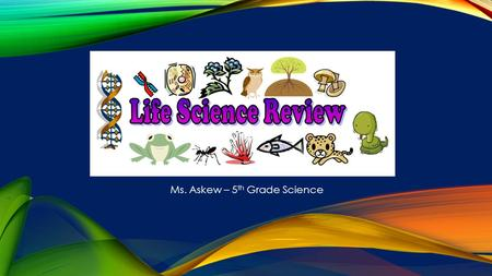 Ms. Askew – 5 th Grade Science. AN ANIMAL WITH A BACKBONE EXAMPLES: FISH, AMPHIBIAN, REPTILE, BIRD, MAMMAL Vertebrate.