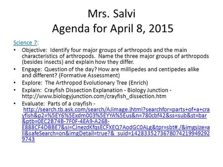 Mrs. Salvi Agenda for April 8, 2015 Science 7: Objective: Identify four major groups of arthropods and the main characteristics of arthropods. Name the.
