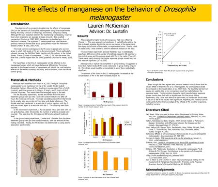 An Introduction to Drosophila Melanogaster