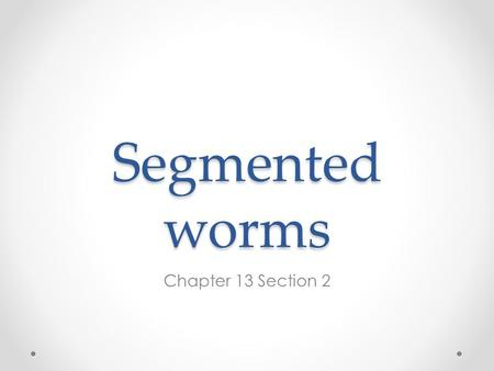 Segmented worms Chapter 13 Section 2. Annelids Segmented worms have setae (bristle-like structures) to hold on to the soil and to move Bilateral symmetry.