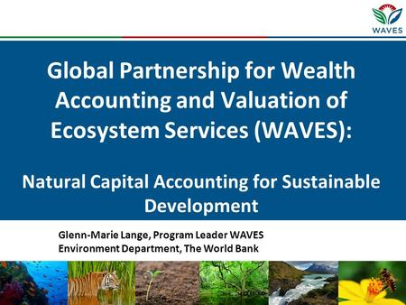 Global Partnership for Wealth Accounting and Valuation of Ecosystem Services (WAVES): Natural Capital Accounting for Sustainable Development Glenn-Marie.