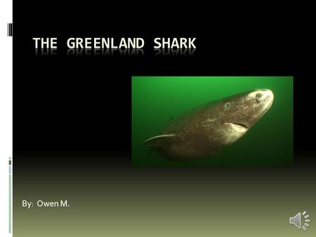By: Owen M. Habitat  The Greenland shark lives in the very deep waters of the North Atlantic Ocean.  It lives at depths to seven thousand-two- hundred.