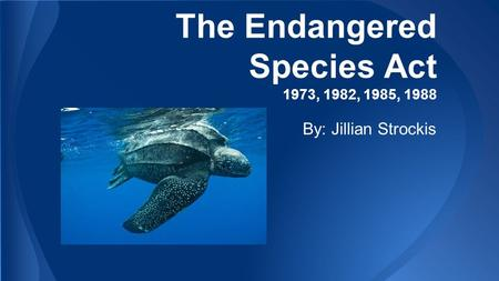 The Endangered Species Act 1973, 1982, 1985, 1988