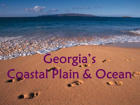 Georgia's Coastal Plain & Ocean