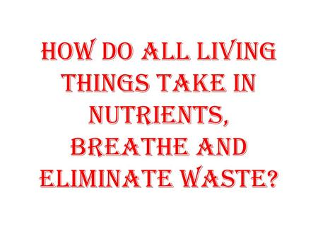 How do all living things take in nutrients, breathe and eliminate waste?