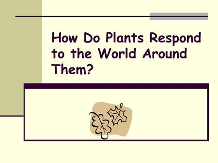 How Do Plants Respond to the World Around Them?. All organisms, including plants, have the ability to receive specific environmental and internal signals.