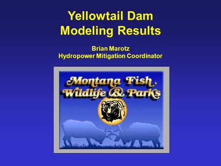 Yellowtail Dam Modeling Results Brian Marotz Hydropower Mitigation Coordinator.