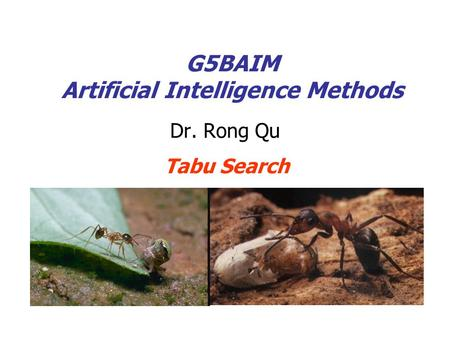 G5BAIM Artificial Intelligence Methods Dr. Rong Qu Tabu Search.