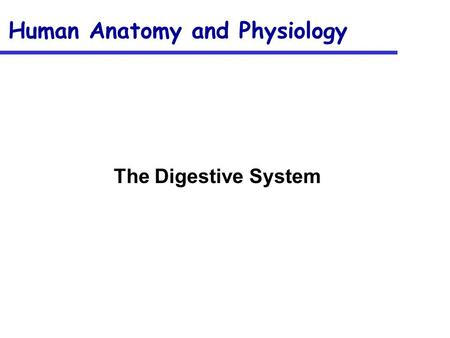 Human Anatomy and Physiology The Digestive System.