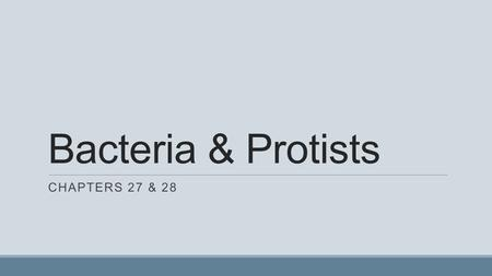 Bacteria & Protists Chapters 27 & 28.