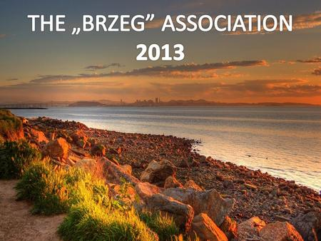 "The ""Brzeg"" Association is responsible for taking preventive actions and organizing psychoeducational training. In 2013 the Association implements the."