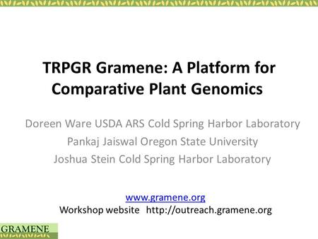 TRPGR Gramene: A Platform for Comparative Plant Genomics Doreen Ware USDA ARS Cold Spring Harbor Laboratory Pankaj Jaiswal Oregon State University Joshua.