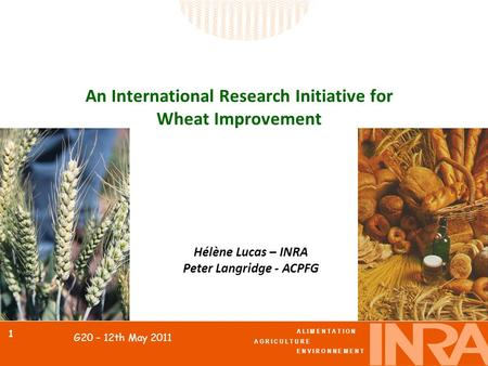 A L I M E N T A T I O N A G R I C U L T U R E E N V I R O N N E M E N T 1 G20 – 12th May 2011 An International Research Initiative for Wheat Improvement.