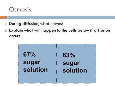 Osmosis 67% sugar solution 83% sugar solution